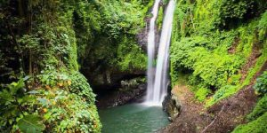 Bali Private Jungle Trekking Tour Cheapest